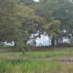 Large residential land in Barbados for sale - excellent location