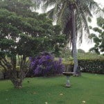 Western lawn of Champaign which is a large property for sale in Barbados