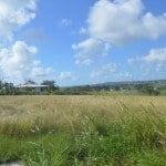 Beautiful large plot of land for sale in Yorkshire Plantation, Christ Church, Barbados